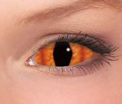 Thundercat Sclera Contact Lenses (1 pair)