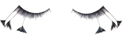 False Eyelashes - C0005