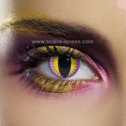 Purple Dragon Eye Contact Lenses (1 pair)