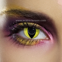 d09ad23040d Crazy Halloween Contact Lenses – Cosplay Scary Contact Lenses